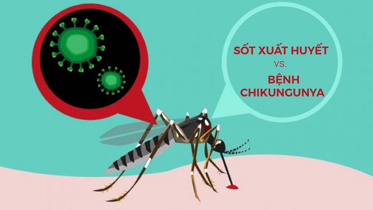 Sốt xuất huyết và bệnh Chikungunya
